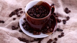 4K Coffee Grain Photo Download#3