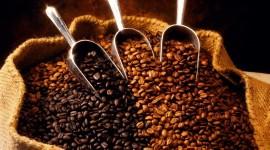 4K Coffee Grain Photo Free