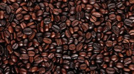 4K Coffee Grain Photo#2