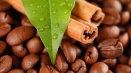 4K Coffee Grain Wallpaper Background