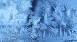 4K Frost Photo Download#3