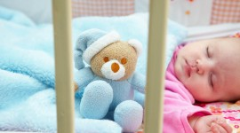 4K Teddy Bear Toy Photo Free