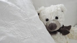 4K Teddy Bear Toy Wallpaper 1080p