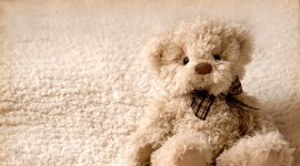 4K Teddy Bear Toy Wallpaper Download