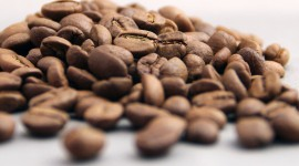 Arabica Grains Wallpaper Background