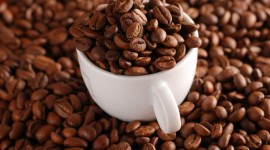 Arabica Grains Wallpaper For PC
