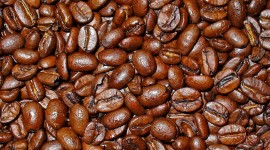 Arabica Grains Wallpaper Full HD