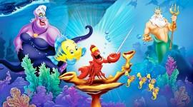 Ariel Wallpaper Download