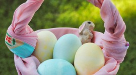 Baskets For Easter Wallpaper For Android
