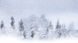 Blizzard Best Wallpaper