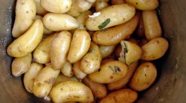 Boiled Potatoes High Quality Wallpaper