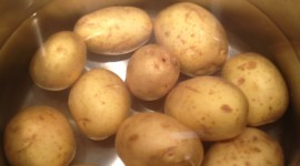 Boiled Potatoes Wallpaper For IPhone Download