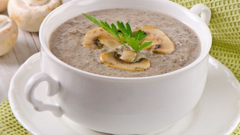 Cream Of Mushroom Soup wallpapers high quality