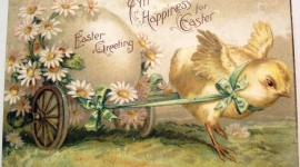 Easter Cards Wallpaper HQ