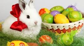 Easter Eggs Desktop Wallpaper For PC