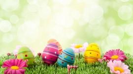 Easter Eggs Desktop Wallpaper HD