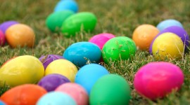 Easter Eggs Photo Free