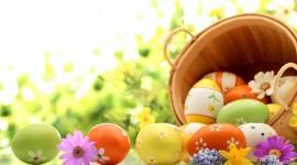 Easter Eggs Wallpaper HQ