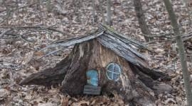 Fairy Houses Wallpaper Full HD
