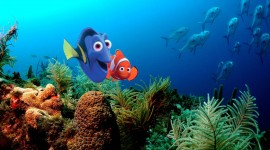 Finding Nemo Desktop Wallpaper For PC