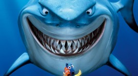 Finding Nemo Wallpaper For IPhone