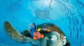 Finding Nemo Wallpaper For Mobile