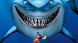 Finding Nemo Wallpaper HQ