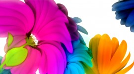 Flowers Of The Rainbow Picture Download