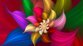 Flowers Of The Rainbow Wallpaper Gallery