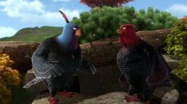 Free Birds Wallpaper 1080p