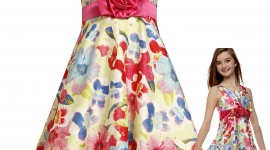Girl Spring Dresses Photo Download