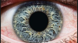 Iris Of The Eyeball Desktop Wallpaper Free