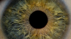 Iris Of The Eyeball Wallpaper 1080p