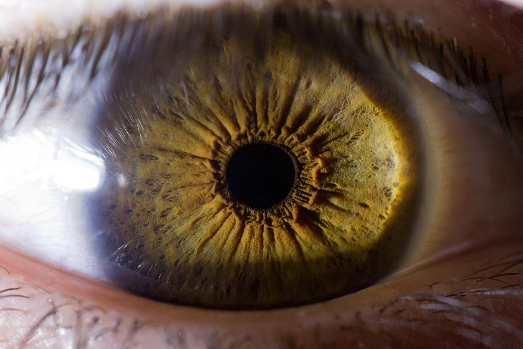 Iris Of The Eyeball wallpapers HD
