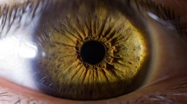Iris Of The Eyeball Wallpaper Download Free
