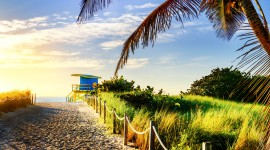 Miami Beach Wallpaper Download