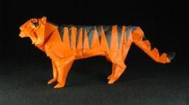 Paper Animals Photo