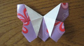 Paper Animals Photo Download