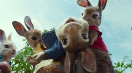 Peter Rabbit Movie Best Wallpaper