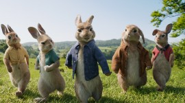 Peter Rabbit Movie High Quality Wallpaper