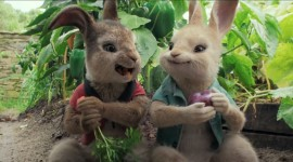 Peter Rabbit Movie Wallpaper For PC