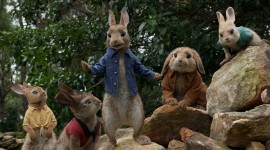 Peter Rabbit Movie Wallpaper Gallery