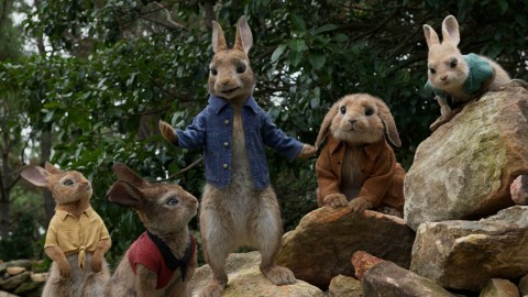 Peter Rabbit Movie wallpapers high quality