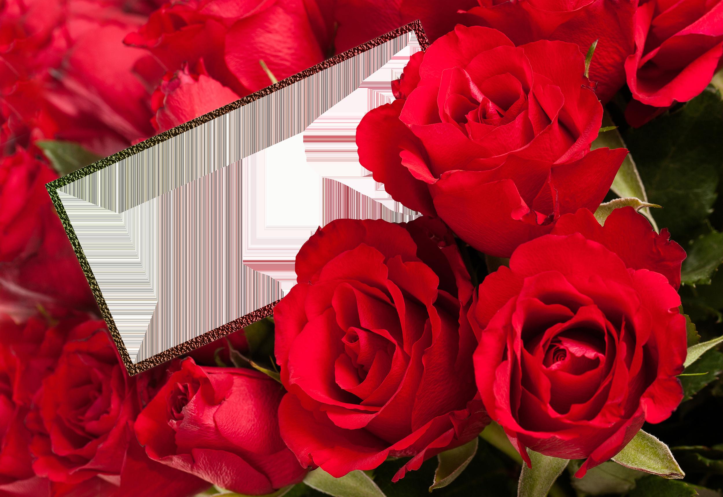 Открытки букеты из роз или просто одиночные розы - 3D галерея 51