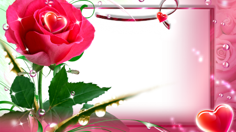 Rose Frames wallpapers high quality