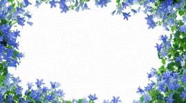 Spring Frame Desktop Wallpaper HD