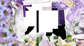 Spring Frame Photo Download