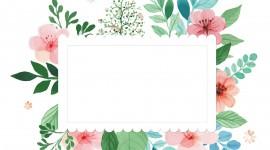Spring Frame Picture Download