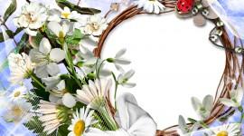 Spring Frame Wallpaper For Desktop