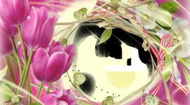 Spring Frame Wallpaper Full HD